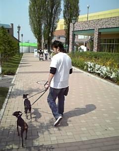 ALIOでお散歩♪