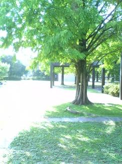 2007_01_12.jpg