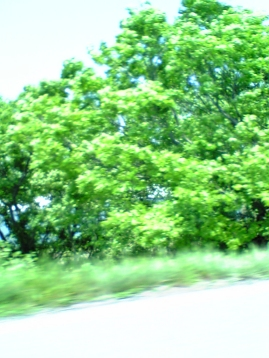 2007_05_07.jpg