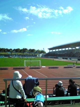 2008_6_5.jpg