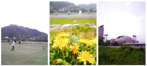 mpic_2006_0502.jpg