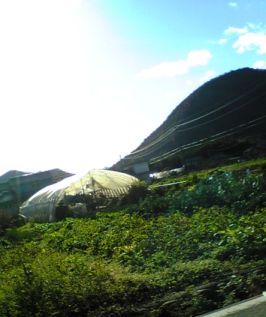 mpic_2006_1212.jpg