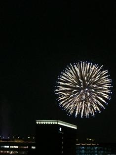 kaiko_3.jpg