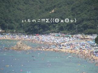 DSC01510.jpg