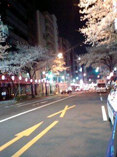 080328_0406~0001中野通り2