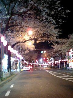 080328_0406~0002中野通り3