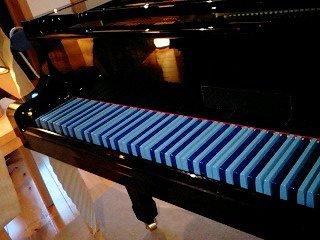 080501_1824~0001管野さん特製のエニーキーピアノ