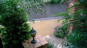 雨が降ってる庭の様子