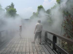 童話の森のミスト橋