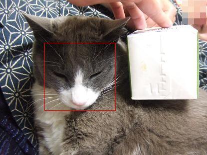2大顔な角度