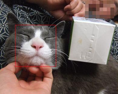 3小顔な角度