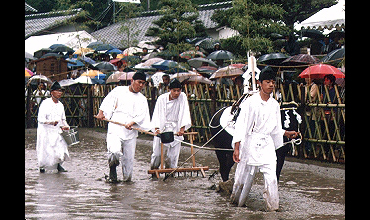 香川県綾上町のお田植まつり-1