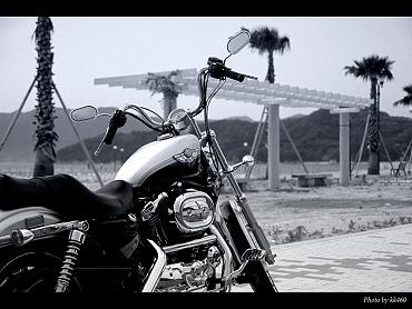 バイクは最高~!