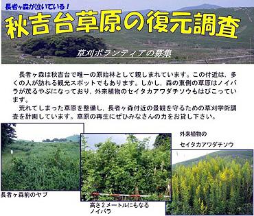 秋吉台草原の復元調査-草刈ボランティアの募集-