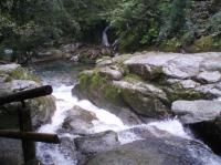白谷雲水峡川2