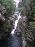 白谷雲水峡川3