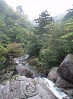 白谷雲水峡川4