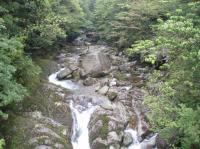 白谷雲水峡川5