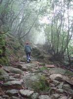 山登りの道