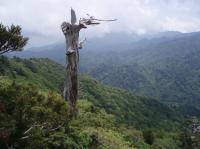 太鼓岩からの眺め2