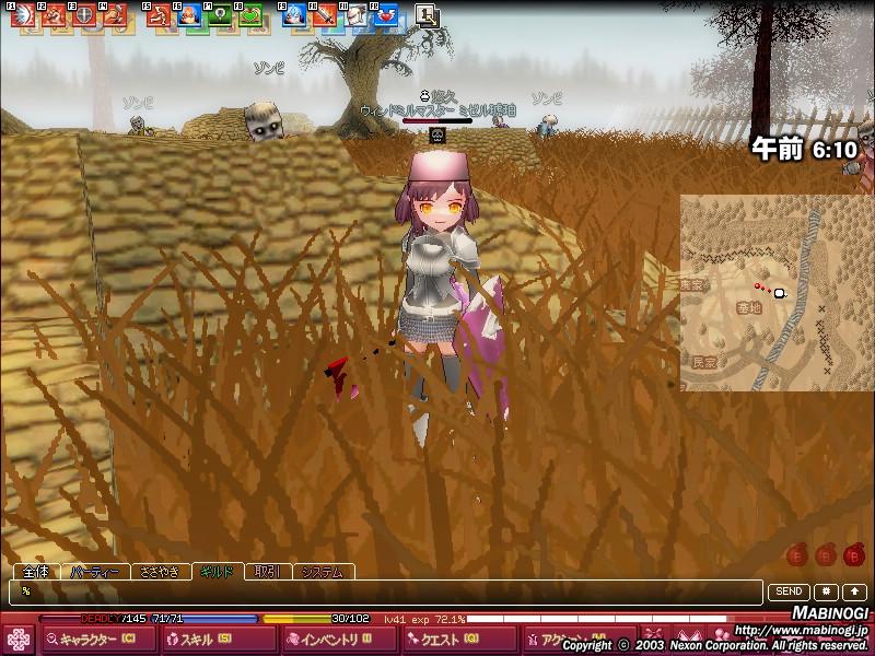 mabinogi_2008_06_24_003.jpg