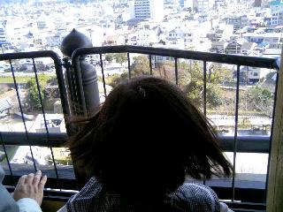 天守閣の上からの眺め