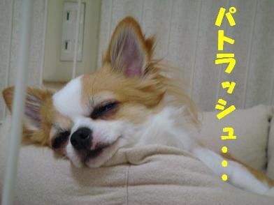 20080516_3.jpg
