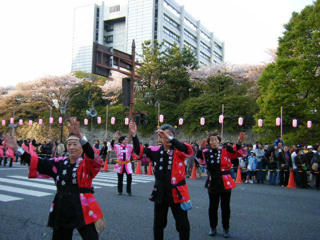 夜桜乱舞2