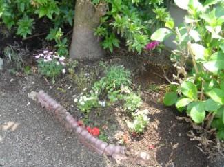 garden0804.jpg