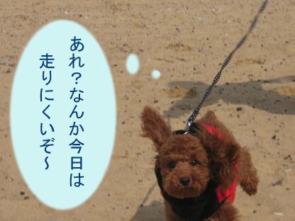 砂浜 ダッシュ2