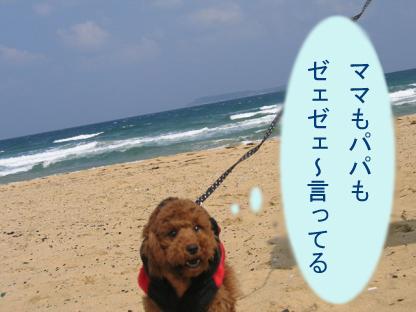 砂浜 ダッシュ3
