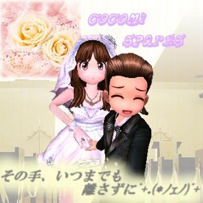 スパ・TOTO Wedding