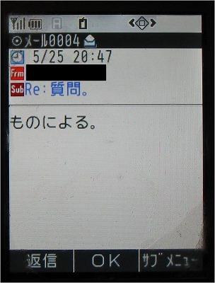 ds008.jpg
