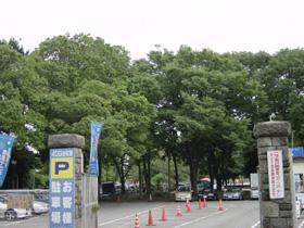 ブログ旧二子玉川園