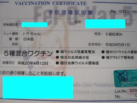 ワクチン4 修正