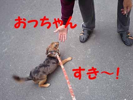 おっちゃんすき~!