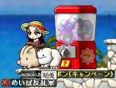 Maple0000_20080702085128.jpg