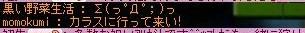 Maple0015_20080714084926.jpg
