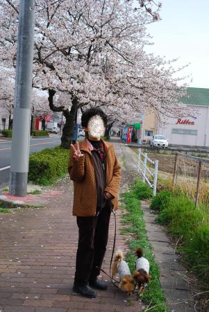 コピー ~ DSC_0417