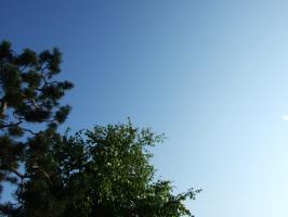 2008_05160083.jpg