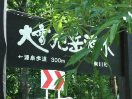 2008_07290003.jpg