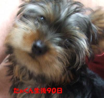 DSCF1032 ②