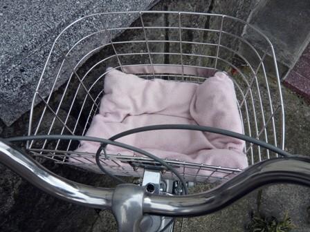 bicycle_0.jpg