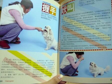 book4.jpg