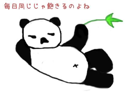 momopanda.jpg