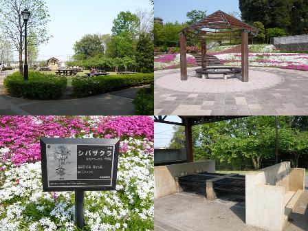 shiroyamapark.jpg