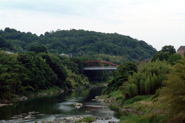 恋の橋より紀ノ川を望む