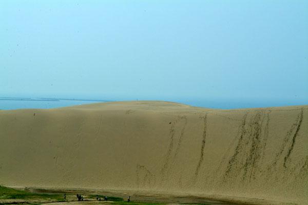 鳥取砂丘砂の壁