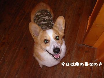 3.22ワンダフル紋兄