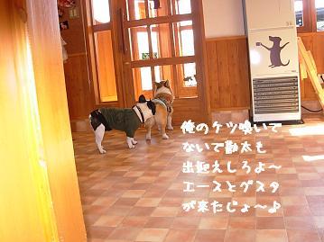 3.22ワンダフル紋兄&勘太2